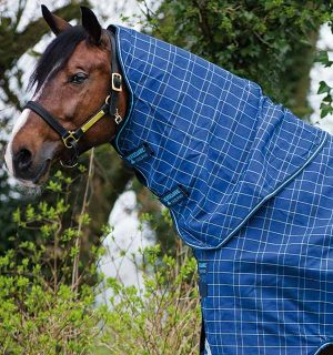 Rhino Original Turnout 0g / 200g still going strong. - Horseware Ireland