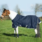 Amigo Bravo 12 Original - Our classic Turnout Rug - Horseware Ireland