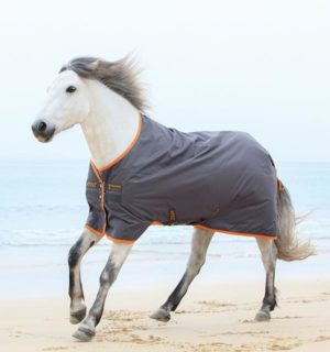 Amigo Hero 6 turnout quality at a great price. - Horseware Ireland