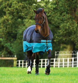 Mio Turnout, breathable to point of dripstrip - Horseware Ireland