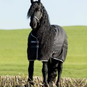 Rambo Stable Rug - Our classic Rambo stable rug. - Horseware Ireland