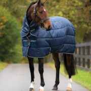 Amigo Insulator Plus Stable rug, your secret weapon against the cold.