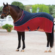 Rambo Sport Cooler, luxurious warm weather cooler. - Horseware Ireland
