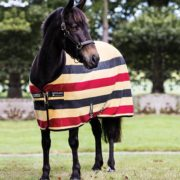Rambo Deluxe Fleece Pony - Whitney Stripe Gold