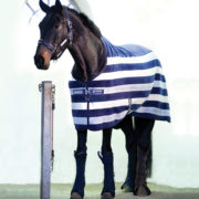 Rambo Deluxe Fleece - Whitney Stripe Navy