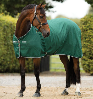 Rambo Stable Sheet Green