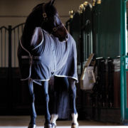 Rambo Stable Sheet, Our classic stable sheet. - Horseware Ireland