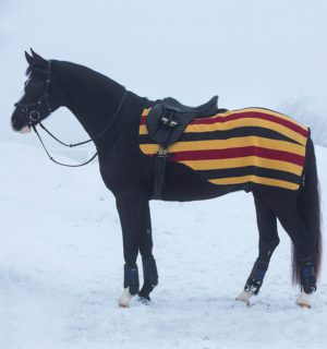 Rambo Competition Sheet, has excellent thermal value - Horseware