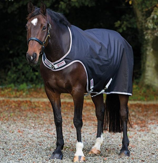 Amigo Walker with a unique cutaway design. - Horseware Ireland
