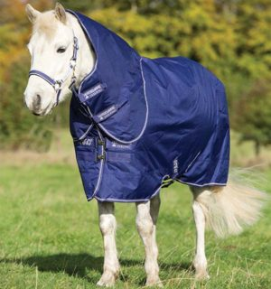 Amigo Hero 6 Plus turnout quality at a great price. - Horseware Ireland