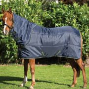 Amigo Insulator Pony Plus Stable rug, your secret weapon against the cold.