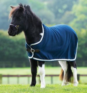 Amigo Petite Show Rug for the smallest equines. - Horseware Ireland