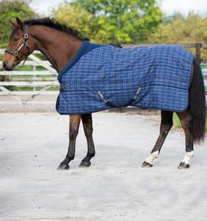 Rhino Original Stable - Improved comfort for the stable - Horseware Ireland