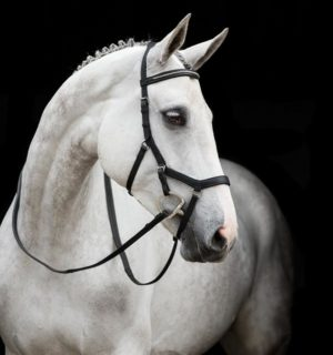 Rambo Micklem English Leather Competition Diamante Bridle