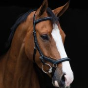 Rambo Micklem Deluxe English Leather Competition Bridle