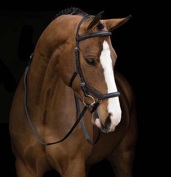 Horseware Rambo MICKLEM DELUXE ENGLISH LEATHER Competition Bridle Black//Brown