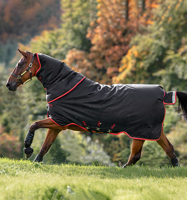 Horseware Amigo Bravo 12 XL Medium Turnout Rug