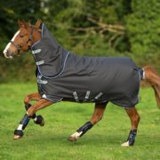 Amigo Bravo 12 Plus Turnout (Disc Front Closure) - Horseware Ireland