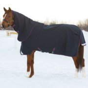 Amigo Bravo 12 XL Turnout, cut to fit the larger horse, for ultimate comfort.