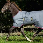 Amigo Foal Rug Suitable For Foals From