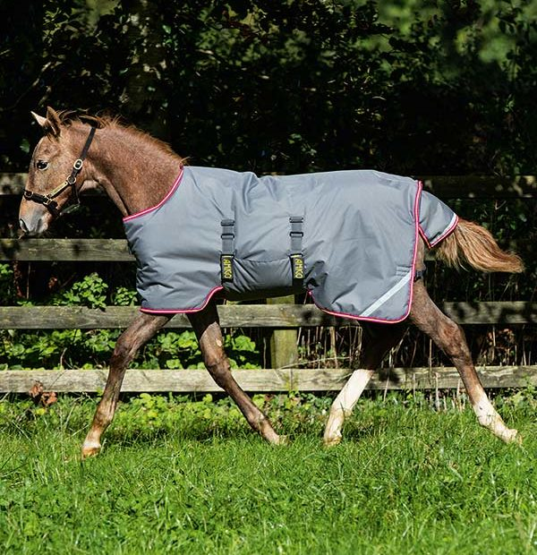Amigo Foal Rug suitable for foals from birth for indoor and outdoor use.