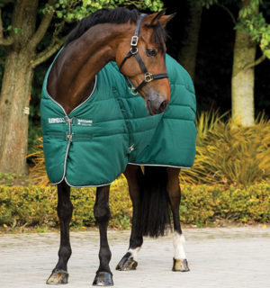 Rambo Stable Rug green