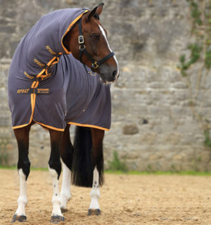 Covering your horse from ears to tail, Amigo All-In-One Jersey Cooler.