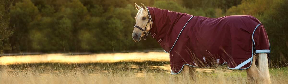 Horses Rugs Archives Horseware Ireland