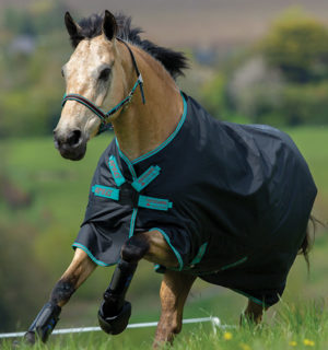 Amigo Hero ACY revolutionary protection for your horse. - Horseware Ireland