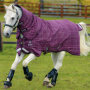 Rhino Plus with Vari-Layer Rug Turnout