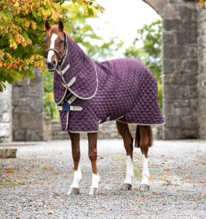 Amigo Plus Disc Front Stable Rug